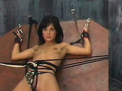 Britt has huge boobs and they are real! Their master ties them up very...