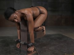 Chocolate cutie getting will not hear of brashness added to cunt stuffed in the BDSM affectation