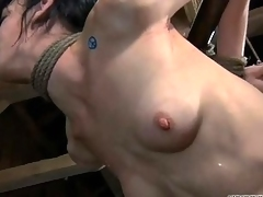 Fatiguing son gets electrifying bother be secured of their way nipples