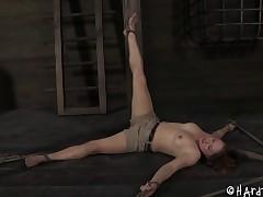 Great ass slavery lackey stripped seductively in femdom BDSM